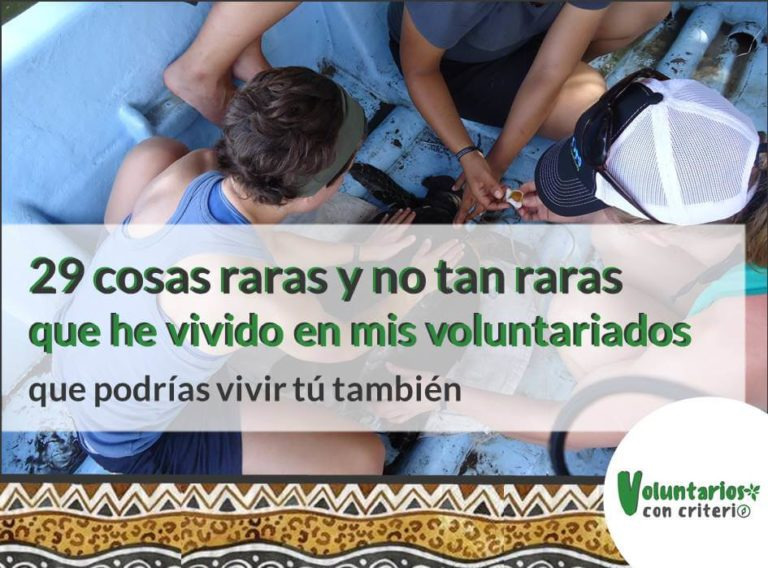 momentos memorables que he vivido en mis voluntariados