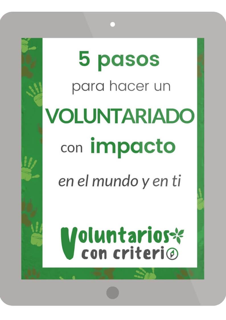 pasos para hacer un voluntariado internacional