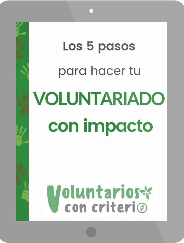 voluntariado con impacto