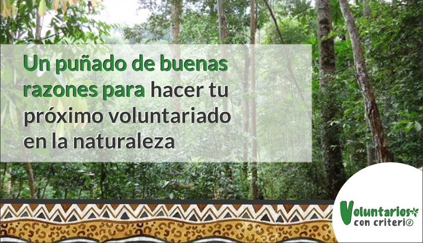 voluntariado en la naturaleza